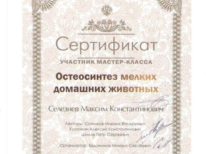 зооветсервис_06
